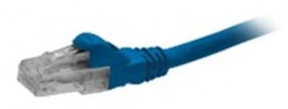 Schneider Patch Cord Blue